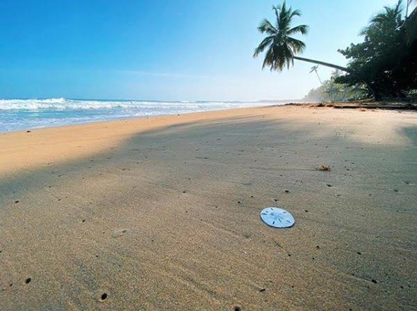 Un paraíso en República Dominicana. Floto Instagram @lasterrenas.do